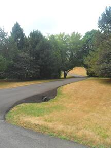 asphalt driveway overlay