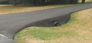 asphalt-culvert-asphalt-contractors.jpg